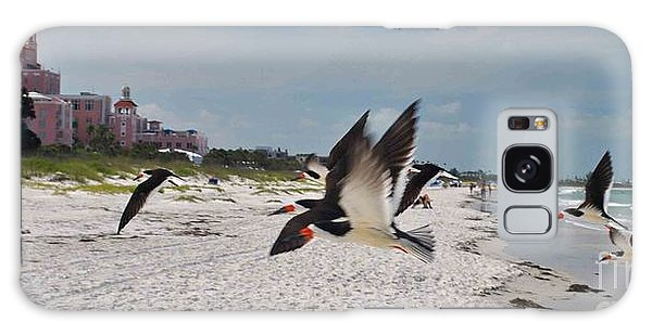 Black Skimmers At Don Cesar Galaxy Case