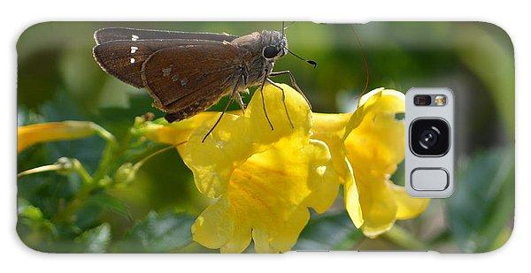 Skipper Butterfly 2 Galaxy Case by Debra Martz