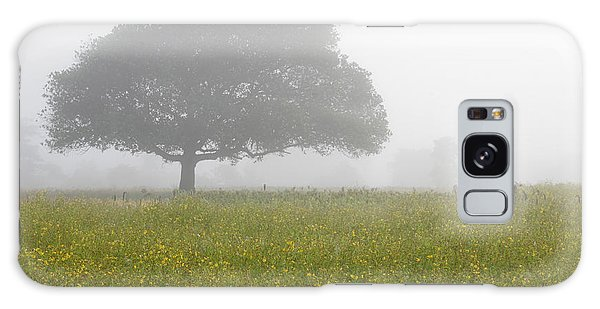 Skc 0056 Tree In Fog Galaxy Case by Sunil Kapadia