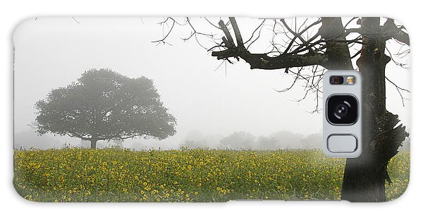 Skc 0060 Framed Tree Galaxy Case by Sunil Kapadia