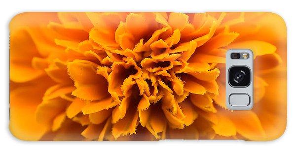 Skunk Flower Orange Galaxy Case