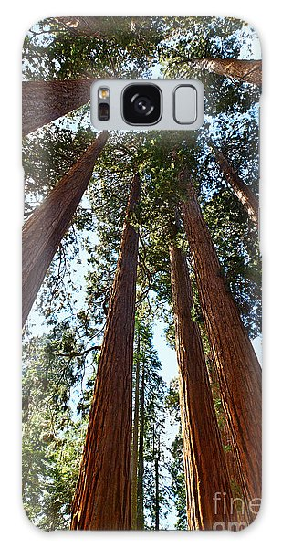 Kings Canyon Galaxy Case - Skyscrapers - A Grove Of Giant Sequoia Trees In Sequoia National Park In California by Jamie Pham