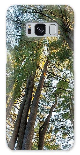 Skyward Trees Galaxy Case by Dawn Romine