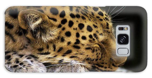 Sleeping Amur Leopard Galaxy Case