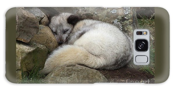 Sleeping Arctic Fox Galaxy Case