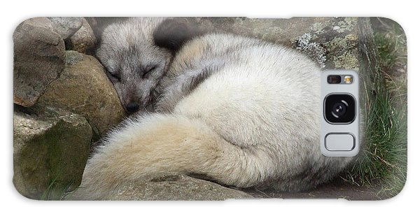 Galaxy Case - Sleeping Arctic Fox by Phil Banks