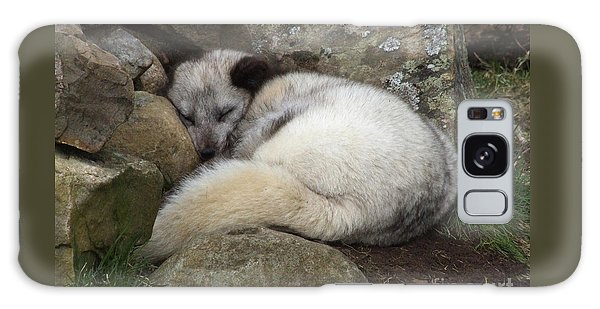 Sleeping Arctic Fox Galaxy Case