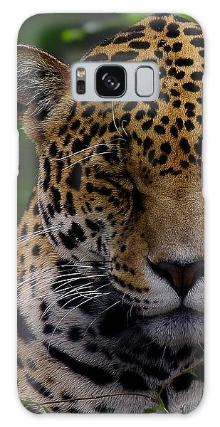 Sleeping Jaguar Galaxy Case