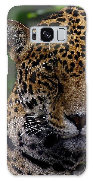 Sleeping Jaguar Galaxy Case