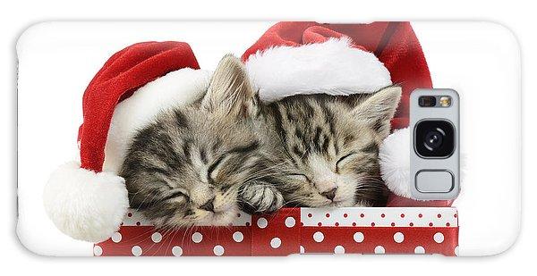 Tabby Galaxy Case - Sleeping Kittens In Presents by MGL Meiklejohn Graphics Licensing