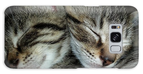 Galaxy Case - Sleeping Kittens by Scott Decker
