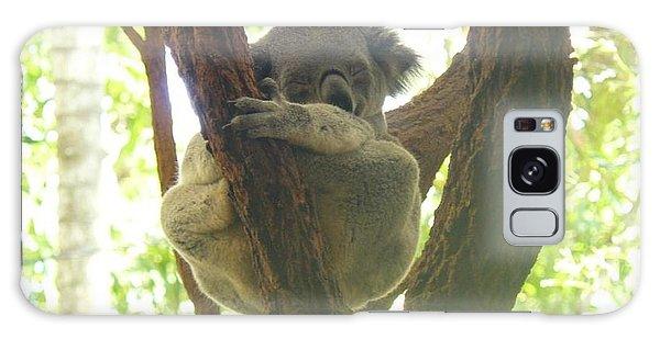 Sleeping Koala In Tree Galaxy Case