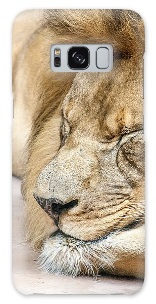 Sleeping Lion Galaxy Case