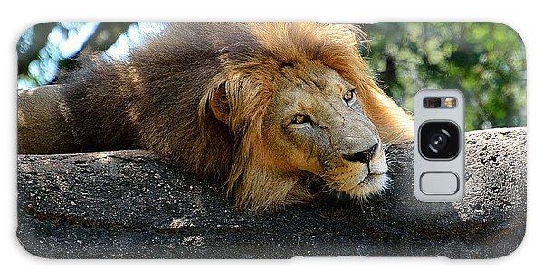 Thinking Lion Galaxy Case by Lisa L Silva