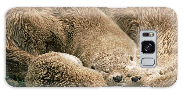 Otter Galaxy Case - Sleeping Otters by Duncan Shaw/science Photo Library