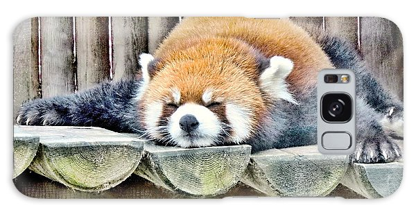 Sleeping Red Panda Bear Galaxy Case