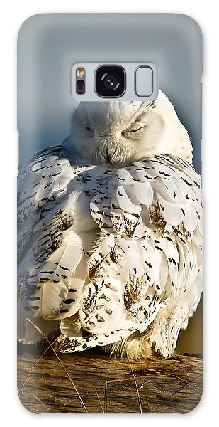 Sleeping Snowy Owl Galaxy Case