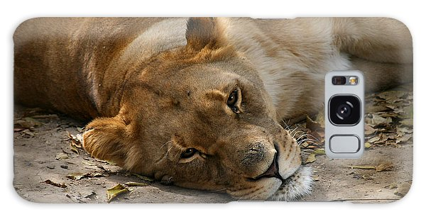 Sleepy Lioness Galaxy Case