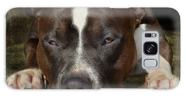 Bull Galaxy Case - Sleepy Pit Bull by Larry Marshall