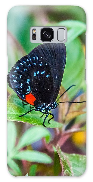 Small Black With Blue Spots Galaxy Case by Karen Stephenson