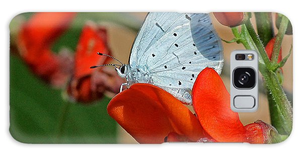 Small Blue Butterfly Galaxy Case by Tony Murtagh