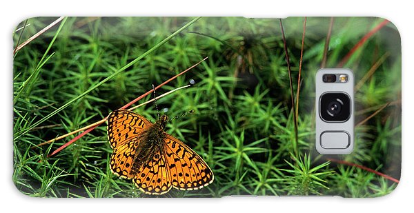 Cairngorms National Park Galaxy Case - Small Pearl-bordered Fritillary Butterfly by Duncan Shaw/science Photo Library