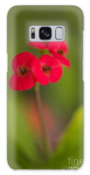 Small Red Flowers With Blurry Background Galaxy Case