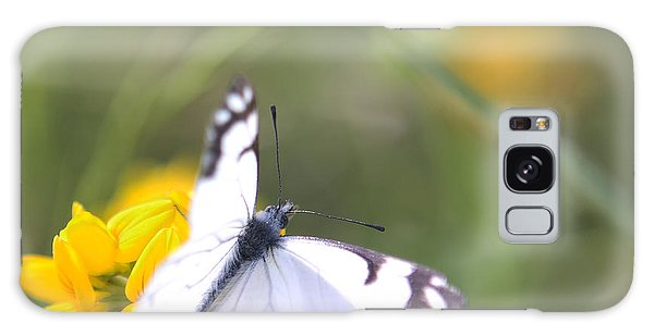 Small White Butterfly On Yellow Flower Galaxy Case by Belinda Greb