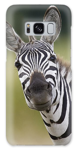Galaxy Case featuring the photograph Smiling Burchells Zebra by Suzi Eszterhas