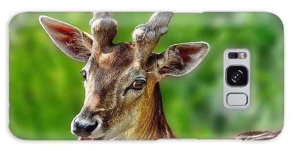 Smiling Deer Galaxy Case