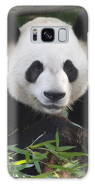 Smiling Giant Panda Galaxy Case