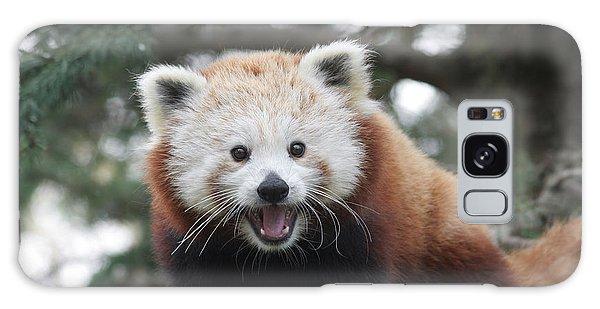 Smiling Red Panda Galaxy Case