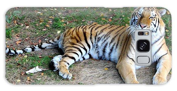 Smiling Tiger Galaxy Case