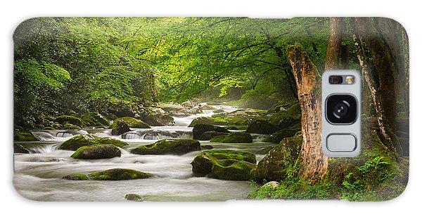 Smoky Mountains Solitude - Great Smoky Mountains National Park Galaxy Case