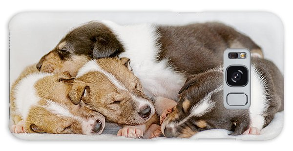 Smooth Collie Puppies Taking A Nap Galaxy Case
