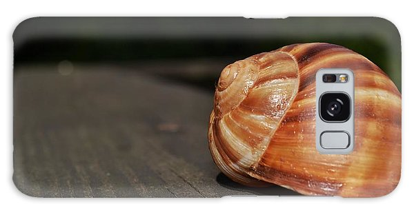 Snail Shell II Galaxy Case