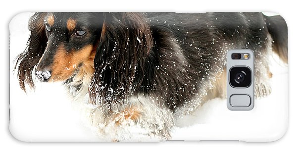Sniffing Out Snow Galaxy Case