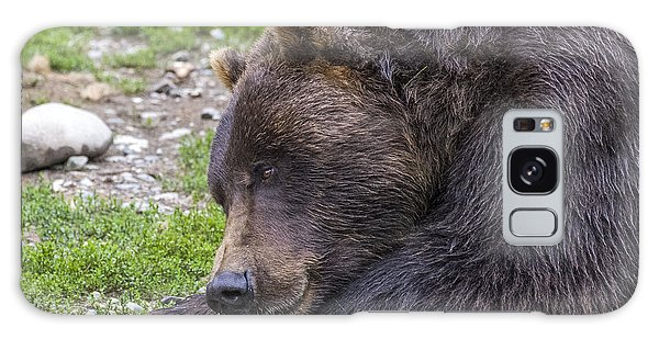 Snoozing Grizzly Galaxy Case by Saya Studios
