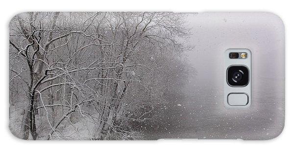Snow At Bulls Island - 12 Galaxy Case