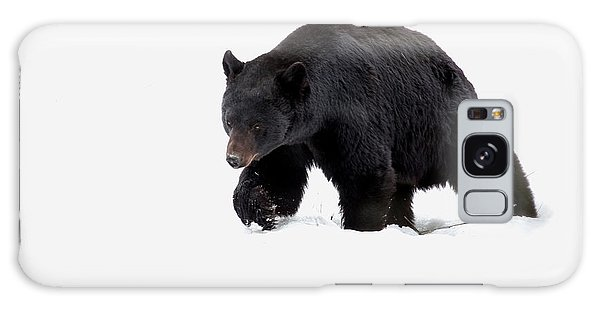 Snow Bear Galaxy Case