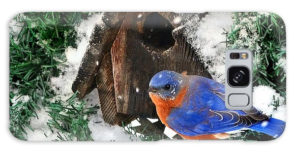 Snow Bluebird Christmas Card Galaxy Case by Nava Thompson