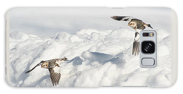Snow Buntings In Flight Galaxy Case