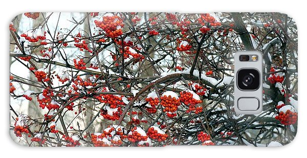 Snow- Capped Mountain Ash Berries Galaxy Case by Will Borden