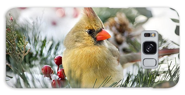 Galaxy Case featuring the photograph Snow Cardinal by Christina Rollo