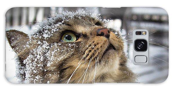 Snow Cat Galaxy Case