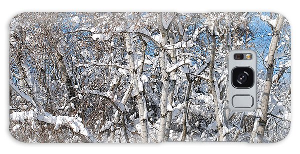 Snow Covered Birch Trees Galaxy Case