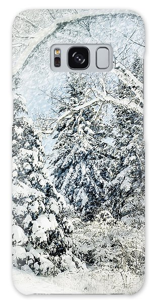 Snow Covered  Galaxy Case by Elaine Manley
