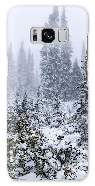 Snow Covered Mountain Ash Galaxy Case
