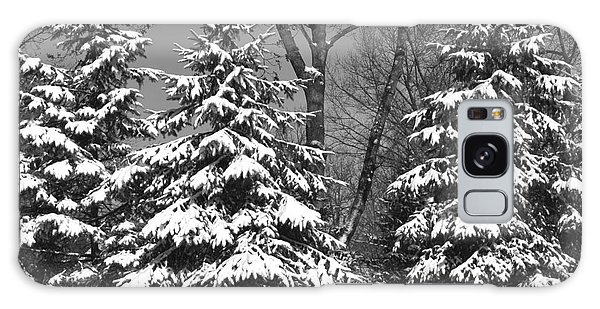 Snow Covered Pines Black And White Galaxy Case