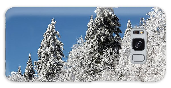 Snow Covered Red Spruce Galaxy Case